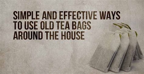 how to use tea bags simple and effective ways to use old tea bags around the house