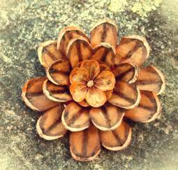 Pine Cone Home Decor decorations 1000 images about pinecone crafts on