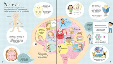 See Inside Your look inside your body at usborne children s books