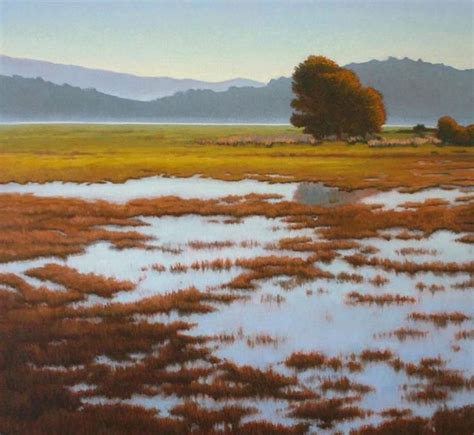 sonoma marin landscape 55 best terry sauve landscape paintings images on northern california and