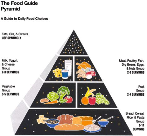 carbohydrates the highest satiety value your health what is the food pyramid