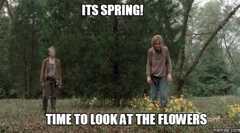 Look At The Flowers Meme - its spring time to look at the flowers memes com