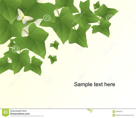 leaf pattern cdr 15 ivy vector free images ivy leaf vector poison ivy