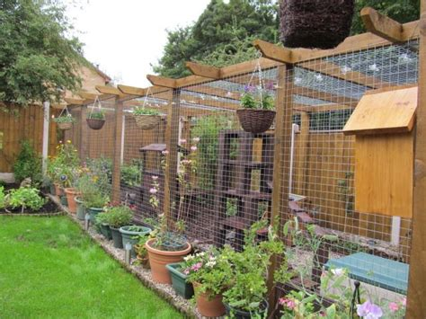 Cat Runs Cat Proofed Gardens Page 11 Pet Forums Garden Enclosure Ideas