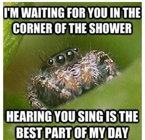 Sad Spider Meme - funny jokes lmao quotes jokes quotes funny pictures