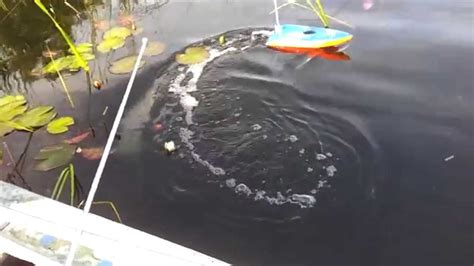 boat deep finder deeper fish finder boat mount deanlevin info