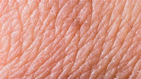 texture of human skin and scratch up macro stock photo colourbox biox getting the skin of the cosmetics industry south bank