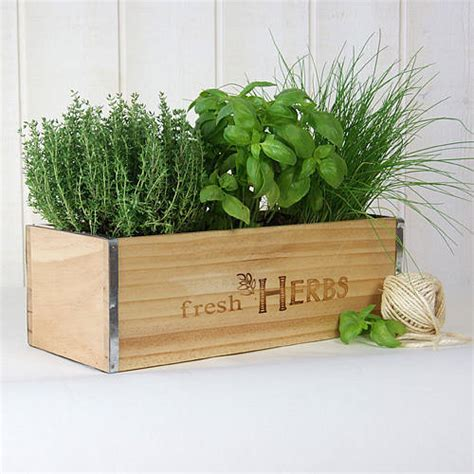 herb boxes fresh herbs window box in natural wood by plant theatre