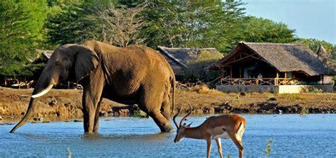 Red by Satao Camp Satao Safari Camp Tsavo East National Park