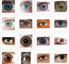what does my eye color say about me eye color facts on facts about eye facts