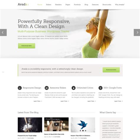 wordpress themes avada review themeforest avada theme review don t buy