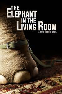 elephants in the living room movies are my reality