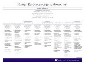 human resource department structure www imgkid com the