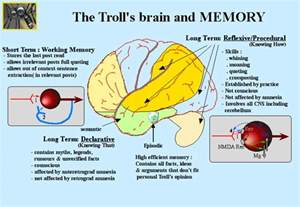 Brain memory storage not merely can your memory