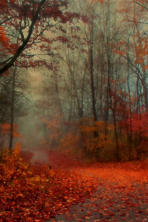 wallpapers for iphone romantic romantic autumn iphone 4s wallpaper download iphone