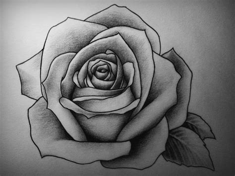 how to draw a traditional rose tattoo attractive drawings design trends