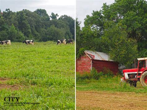 The Farmer S Shed Sc by How A South Carolina Farmer Revolutionized Happy Cow