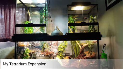 diy custom reptile enclosure terrarium vivarium exo