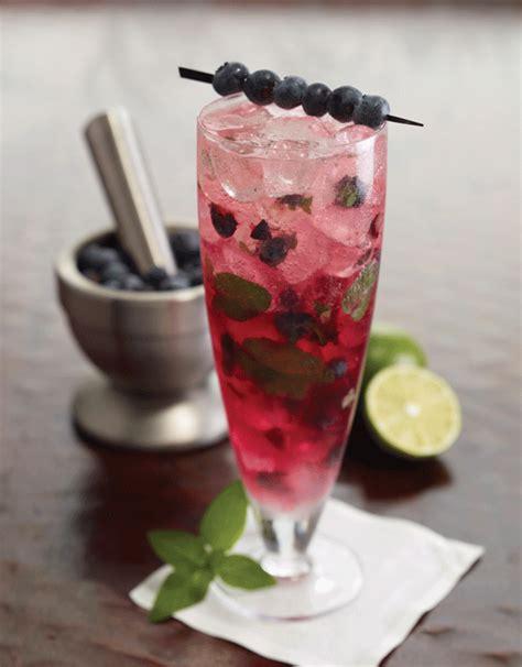 mojito cocktail vodka ruth s chris bar recipes vodka cocktail blueberry mojito