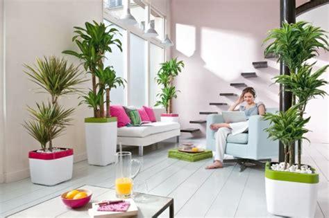 Schlafzimmer Pflanzen Feng Shui by Feng Shui Pflanzen F 252 R Harmonie Und Positive Energie Im