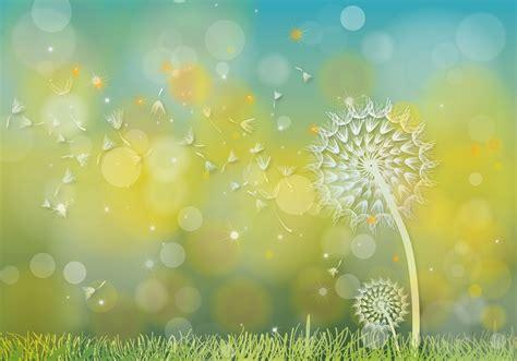 dandelion background dandelions hijau background vector free vector