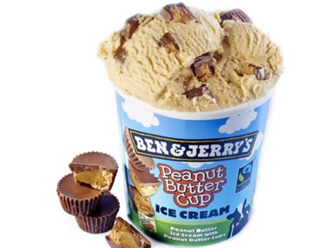 What Is Your Favorite Flavor Of Ben Jerrys by Best 25 Phish Food Ideas On Phish