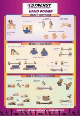 office exercise wall chart set synergy target exercises