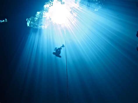 diving wallpaper gallery