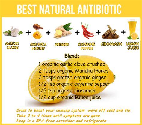 Healing Home Foods by Receita De Antibi 243 Tico Nutricionista Bh