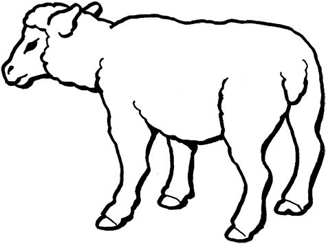 black sheep coloring pages coloring pages for free sheep templates printable clipart best