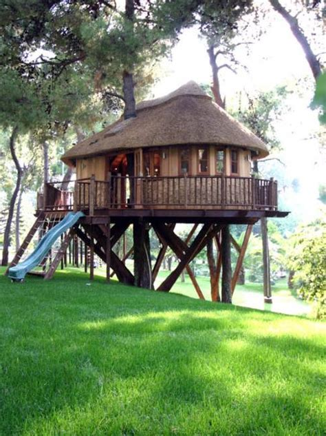 25 tree house designs for backyard ideas to keep