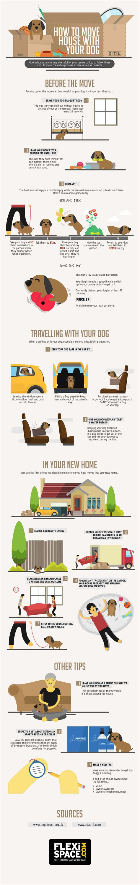 moving house with a dog infographic tips on moving house with your dog vanillapup