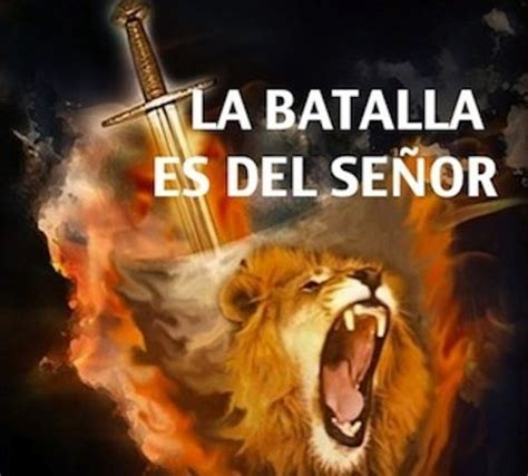 imagenes cristianas leones el le 243 n pelea por t 237 jes 250 s el le 243 n de la tribu de juda
