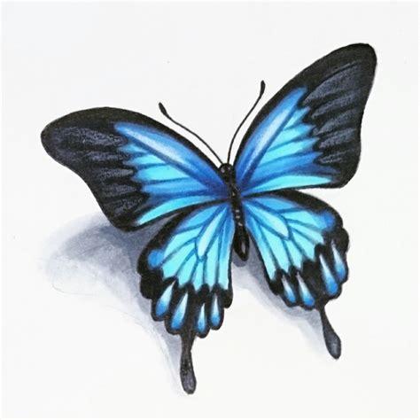 realistic butterfly tattoo designs skinevolutiontattoo konomi konomiangel