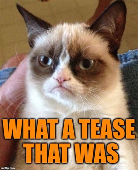 Cat Memes Generator