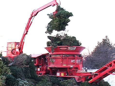 cllr kieran dennison christmas tree recycling in dublin 15