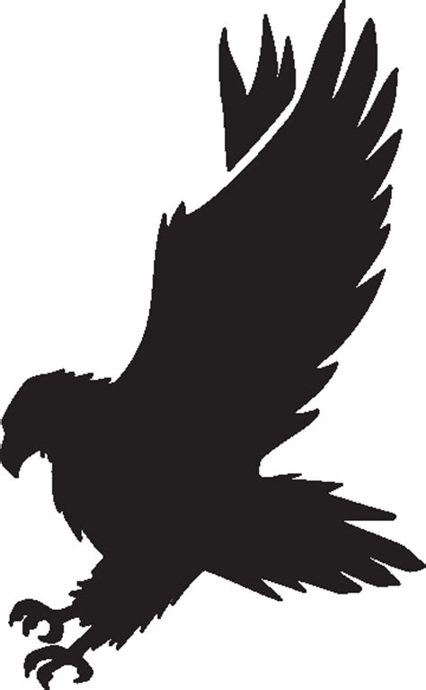 Black Hawk Outline by Free Hawk Clipart Cliparts Co