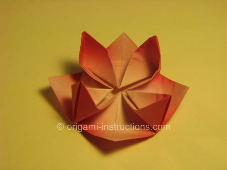 How To Fold Origami Lotus - image gallery origami water