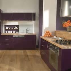 cuisine aubergine pas cher sur cuisine lareduc
