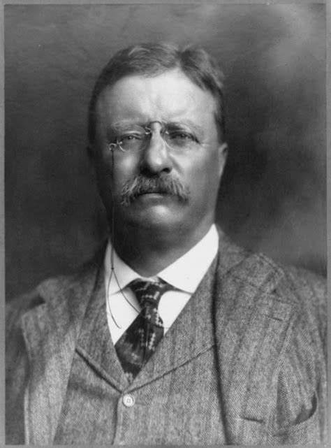 presidency of theodore roosevelt wikipedia the free best 25 theodore roosevelt facts ideas on pinterest