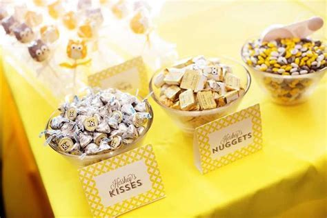 Kara's Party Ideas Owl Yellow Grey Gray Twin Baby Shower Party Planning Ideas Cake Idea