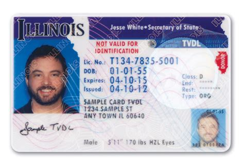 illinois id card template illinois temporary visitor driver s license