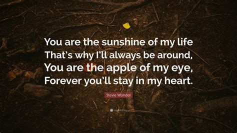 apple of my eye quotes stevie wonder quote you are the sunshine of my life that