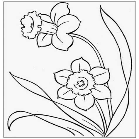 disegni da colorare fiori di primavera fiore di primavera da colorare disegni da colorare per