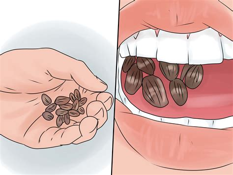 how to eat sunflower seeds with pictures wikihow