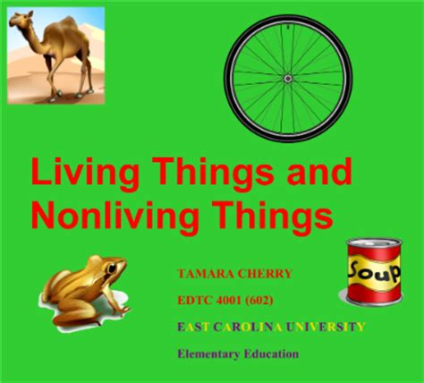 smart exchange usa living and non living things