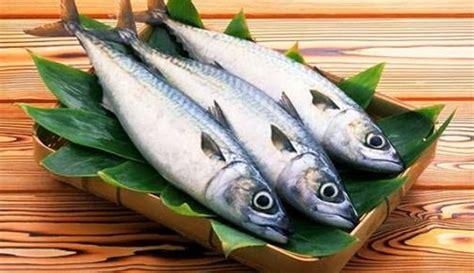 Ikan Bawal Segar 17 manfaat dan khasiat ikan bawal untuk kesehatan khasiat