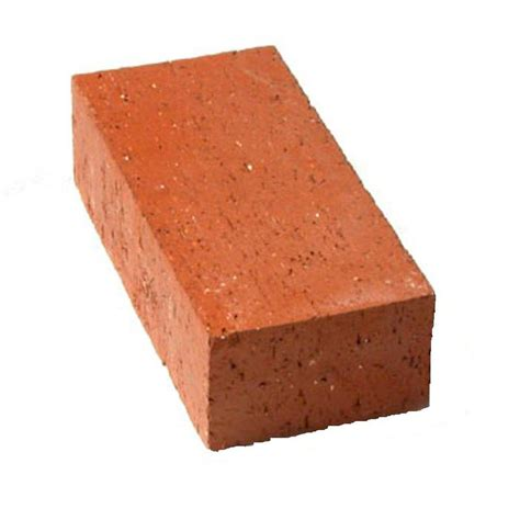 shop pacific clay common clay standard brick at