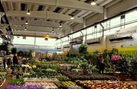 mercato dei fiori torino foto mercato dei fiori torino