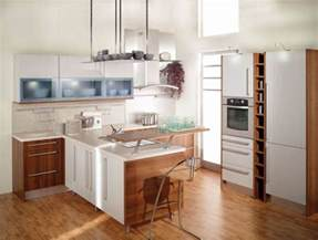 Home Design Ideas Small Kitchen by Small Kitchen Design Ideas 2012 Home Interior Designs
